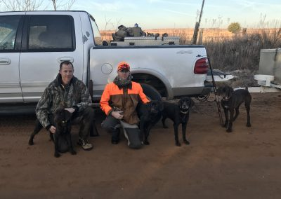 Chris and Brandon, friends of mine, and I got into a few bobwhite's (on dog box) on public land in OK on Dec. of 2019. Dogs from left to right are Sage, Meeka, Kindle, and Finn.