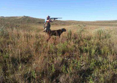 Cedarwood's Cowboy Oakley, UT I on a wild bird hunt in Nebraska