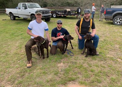 Cross Timber's Above and Beyond (left), Cross Timber's Apex (middle), and Cross Timber's American Fallon at a TX NAVHDA NA Test in 2020.