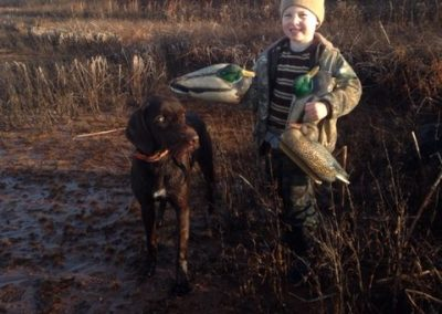 Nov. of 2014- Finn with my son who is helping with the decoys. Didn't shoot but a few ducks on this day. Sometimes it's more about memories made with your kids.